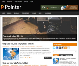 Pointer Blogger Template